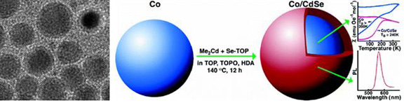 Cobalt/CdSe core shell nanocrystals