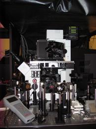 Nanotechnology And Advanced Spectroscopy Team